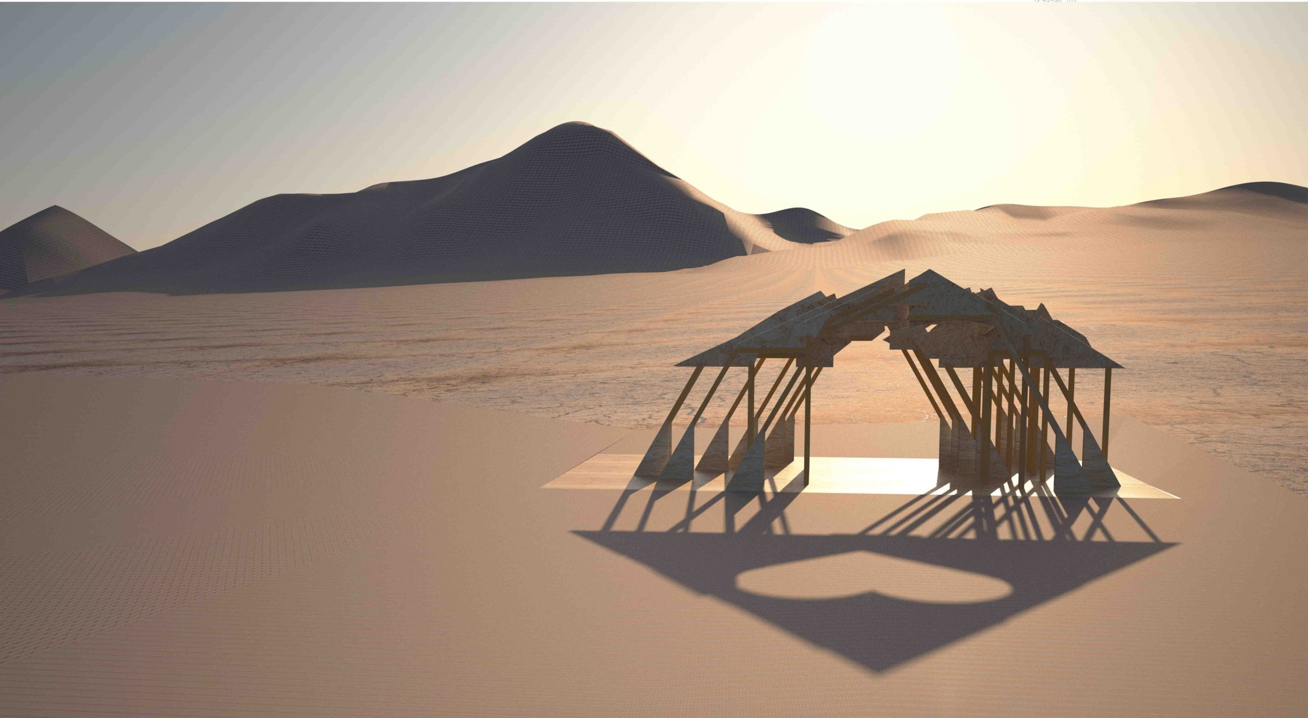 Burning Man Festival (16)