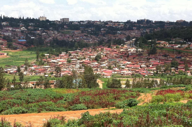 Ryico Project | Rwanda